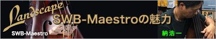 SWB-Maestro