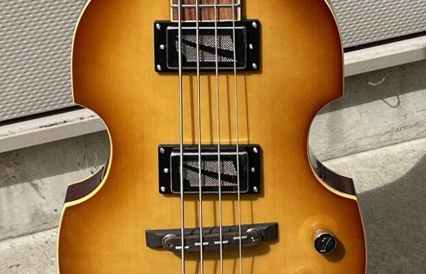 ITALIA  Violin bass 特化販売